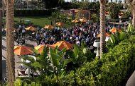 Scrapbook: MD Expo Irvine