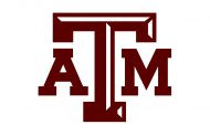 Biomedical scholar, NIH executive joins Texas A&M to lead engineering health initiative