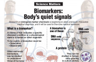 Biomarkers: Body's quiet signals