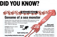 Genome of a sea monster