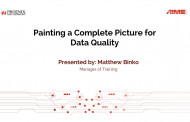 Painting a Complete Picture for Data Quality